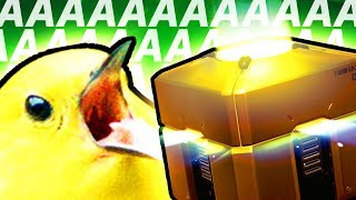 Overwatch Loot Box Controversy