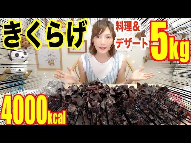 【大食い】大量ののきくらげを食べるよ!デザートもあるよ![5キロ]ヘルシー[4000kcal]宮城県【木下ゆうか】