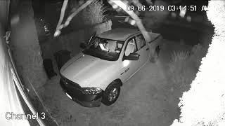 Theft From Auto, Vehicle Prowl Suspect, Tacoma, WA