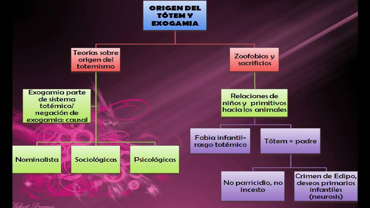 psicoanalisis freud pdf libro