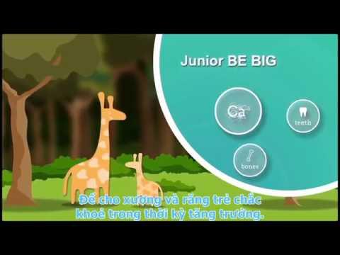 Junior Hit - bộ sản phẩm không thể thiếu dành cho trẻ em
