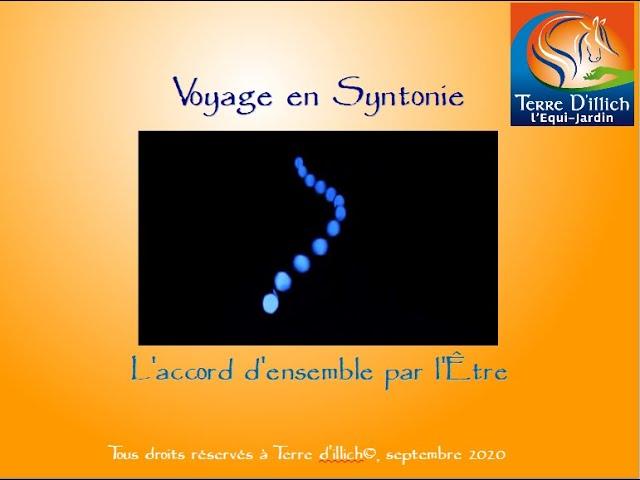 Voyage en Syntonie
