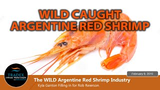 3MMI - The WILD Argentine Red Shrimp & Farmed Black Tiger Shrimp Industry