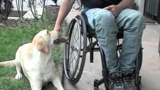 Video Rollstuhlzubehör - Rollimoden und Accessoires für Rollstuhlfahrer Thumbnail