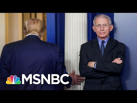 Trump's White House Tries To Discredit Fauci As COVID-19 Surges   The 11th Hour   MSNBC