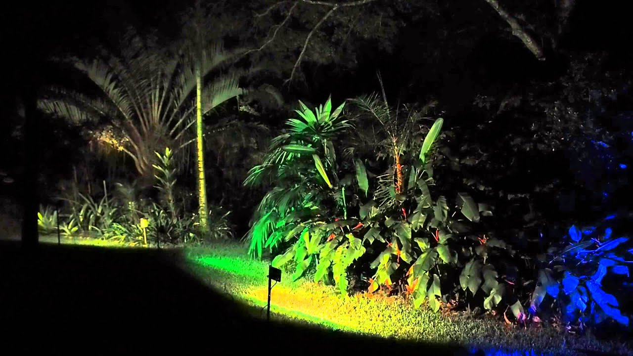 Testing LED color changing floodlights in the backyard - YouTube