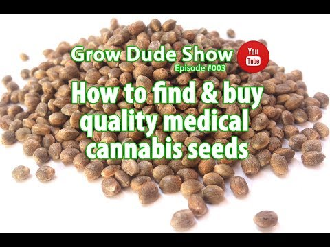 How to find & buy quality medical cannabis seeds / hemp seeds – Episode #003 – Grow Dude Show