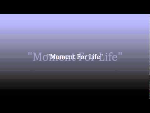 Moment 4 Life Instrumental With Hook And DL Link
