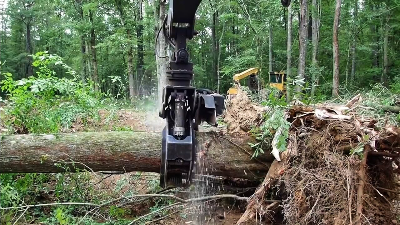 Rotobec grapple saw cutting big stumps!