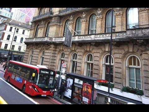 Grosvenor Hotel London Room Walkthrough 360 VR