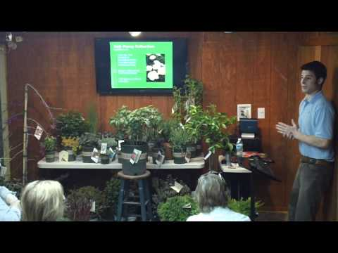 Monrovia New Plant Introductions April 2 2011 from The GreenRoom at Bates Nursery presented by Steven Morrill