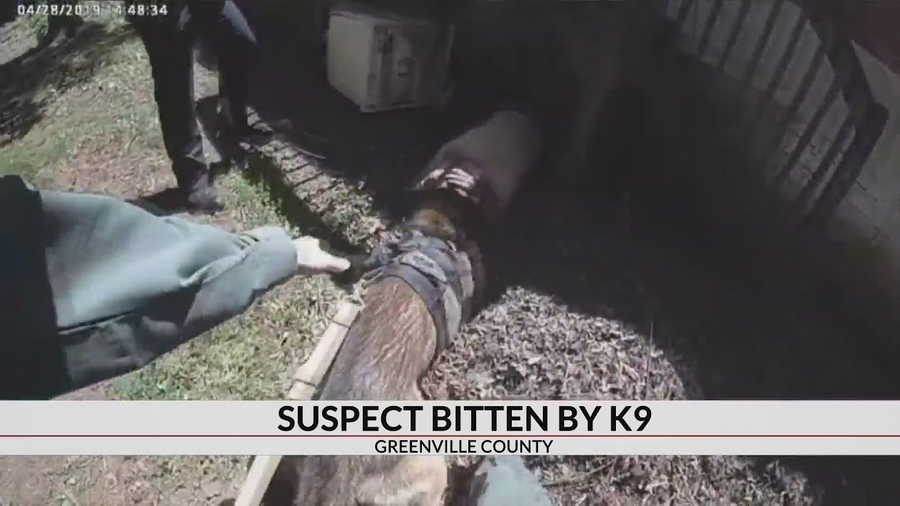South Carolina: Cop Allows K9 To Bite Suspect