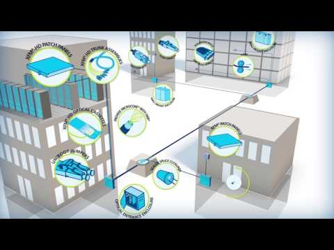 Delivering end-to-end fiber optic solutions for enterprise networks