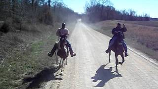 Repeat youtube video Hit Man and Outcast Single-footing horses