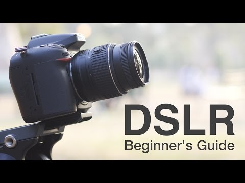 How to Use a DSLR Camera? A Beginners Guide