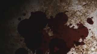 Book Trailer - Guida ai luoghi misteriosi della Basilicata. Leggende lucane e storie di fantasmi.