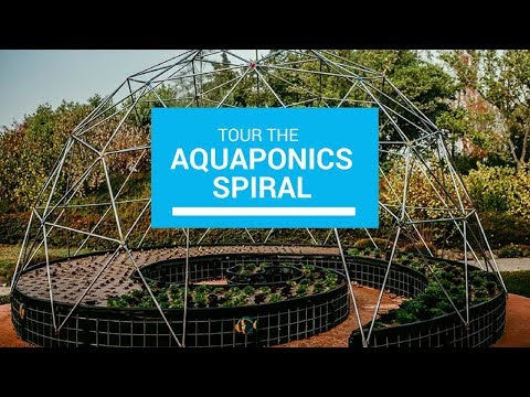 Tour of Our Spiral Aquaponics System at the Solar Living Center