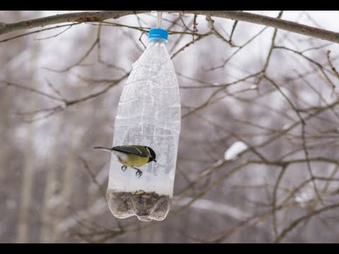 How to make bird feeders out of plastic bottles youtube for What can we make out of plastic bottles