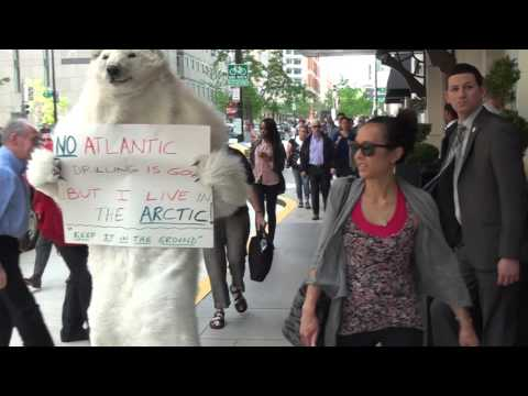 Marriott is Mean  to Polar Bears and Nice to the Oil Industry