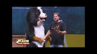 Bülent Ceylan verarscht Martin Rütter - Bülent und seine Freunde