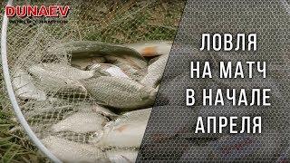 Ловля на матч. Весенняя рыбалка