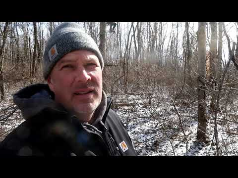 Salt Fork, Ohio Grassman Bigfoot Hunt