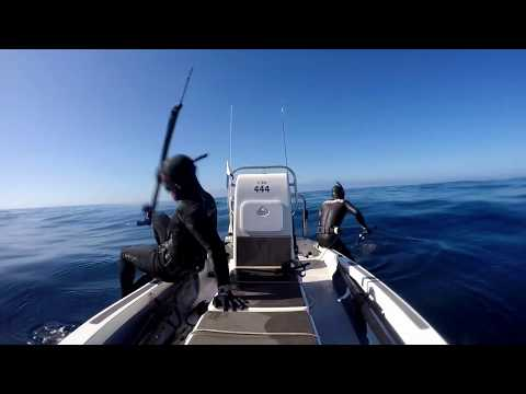 Spearfishing Arniston Feb 2020