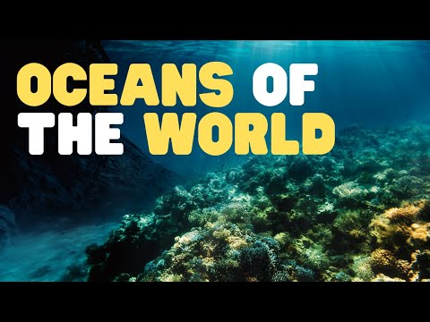 Oceans Of The World For Kids | Learn All About The 5 Oceans Of The Earth