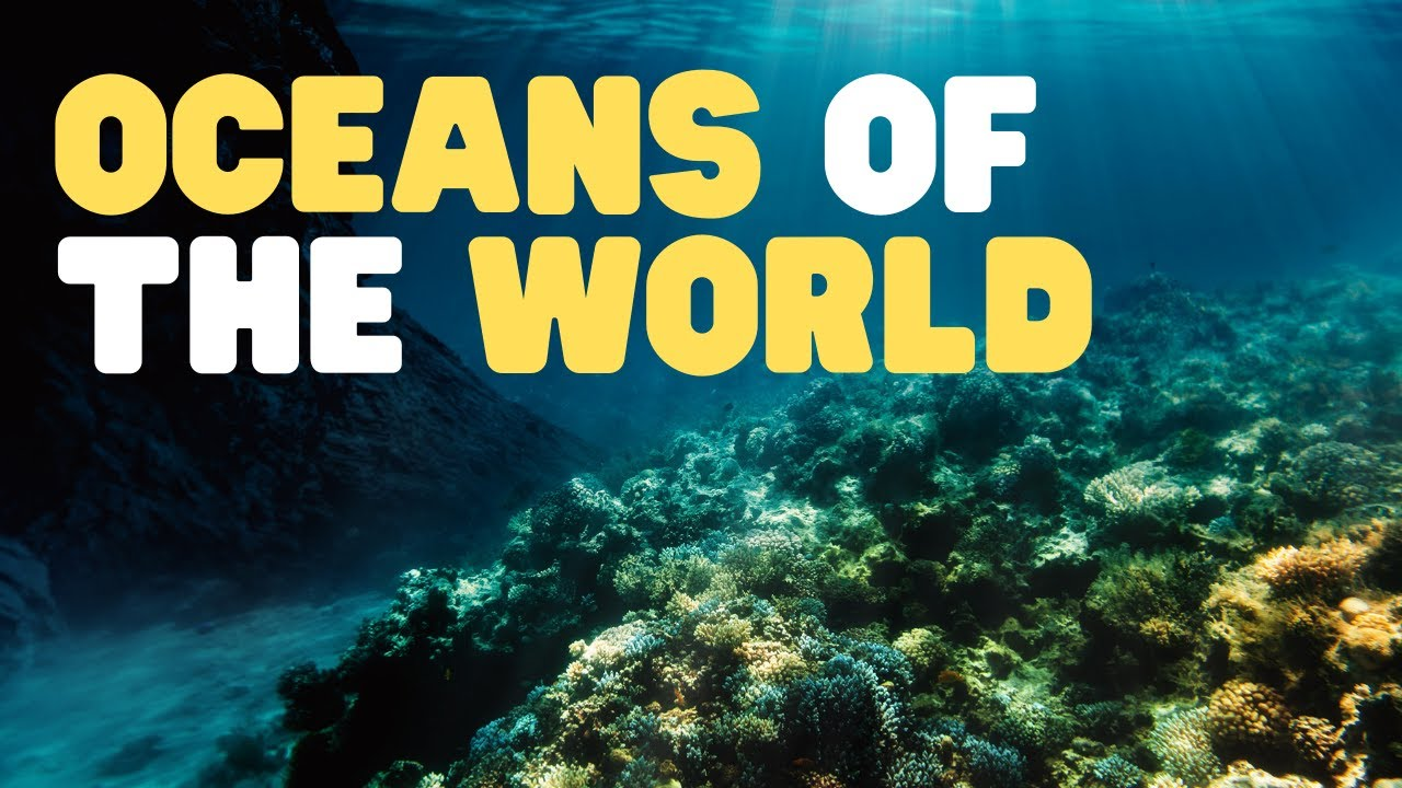 Map Of World And Oceans.Oceans Of The World For Kids Learn All About The 5 Oceans Of The