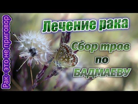 Лечение рака сбор трав при онкологии  Сбор трав по Бадмаеву