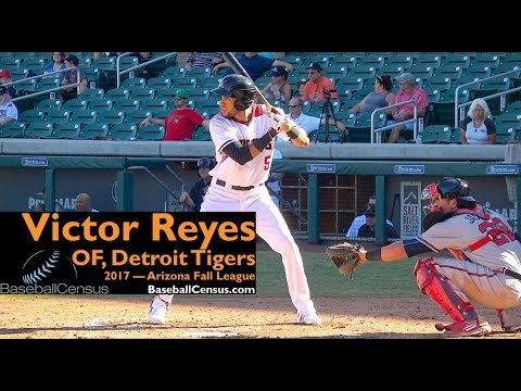 Victor Reyes, OF, Detroit Tigers — 2017 MLB Rule 5 Draft Pick