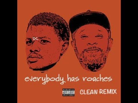 Everybody Has Roaches(Clean Remix) - DCYoungFly, Karlous Miller