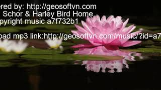Jordan Schor & Harley Bird Home No copyright music a7f732b1 a7f732b1