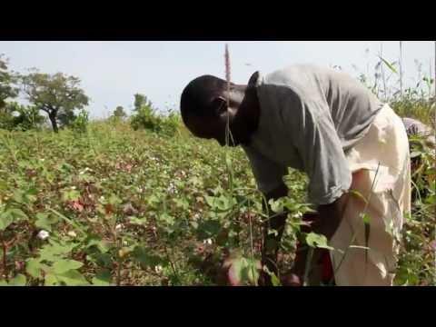 Iota Course Session 5: film 5.2 - Trade in Mali