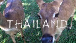 Download Video THAILAND 2015 MP3 3GP MP4