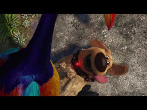 Talking Dog From Pixars Up