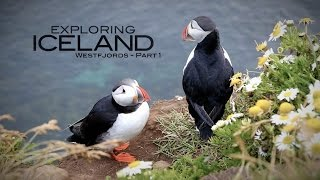 Iceland Part 3 - Westfjords and the Látrabjarg Bird Cliffs to see Puffins.