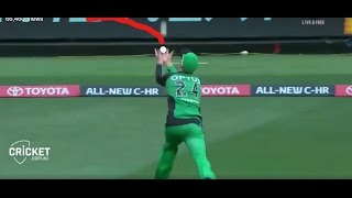 best catch of bbl 2016 17 ll incredible by kevin pietersen