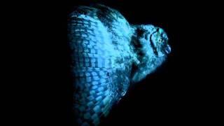 Mondkopf - The Song Of Shadows