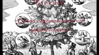 Los 33 grados de la Masonería.Parte 2
