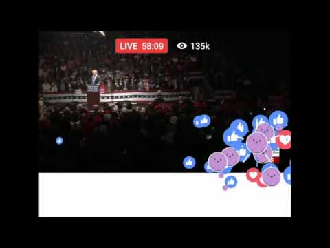 Member Berries Crash Donald's Final Campaign Speech - YouTube