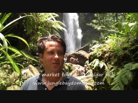 Roseau market tour & Trafalgar falls - Jungle Bay Resort & Spa, Dominica