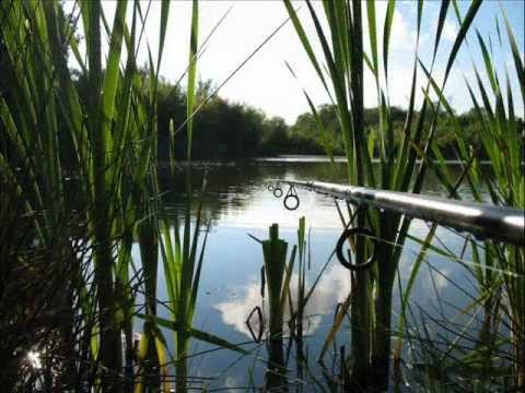 Hartley Wintney Angling Society Rivers and Lakes