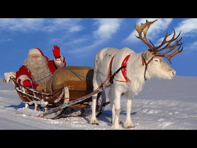 Père Noël & rennes\: les meilleures vidéos du Papa Noël en Laponie Finlande Rovaniemi Santa Claus