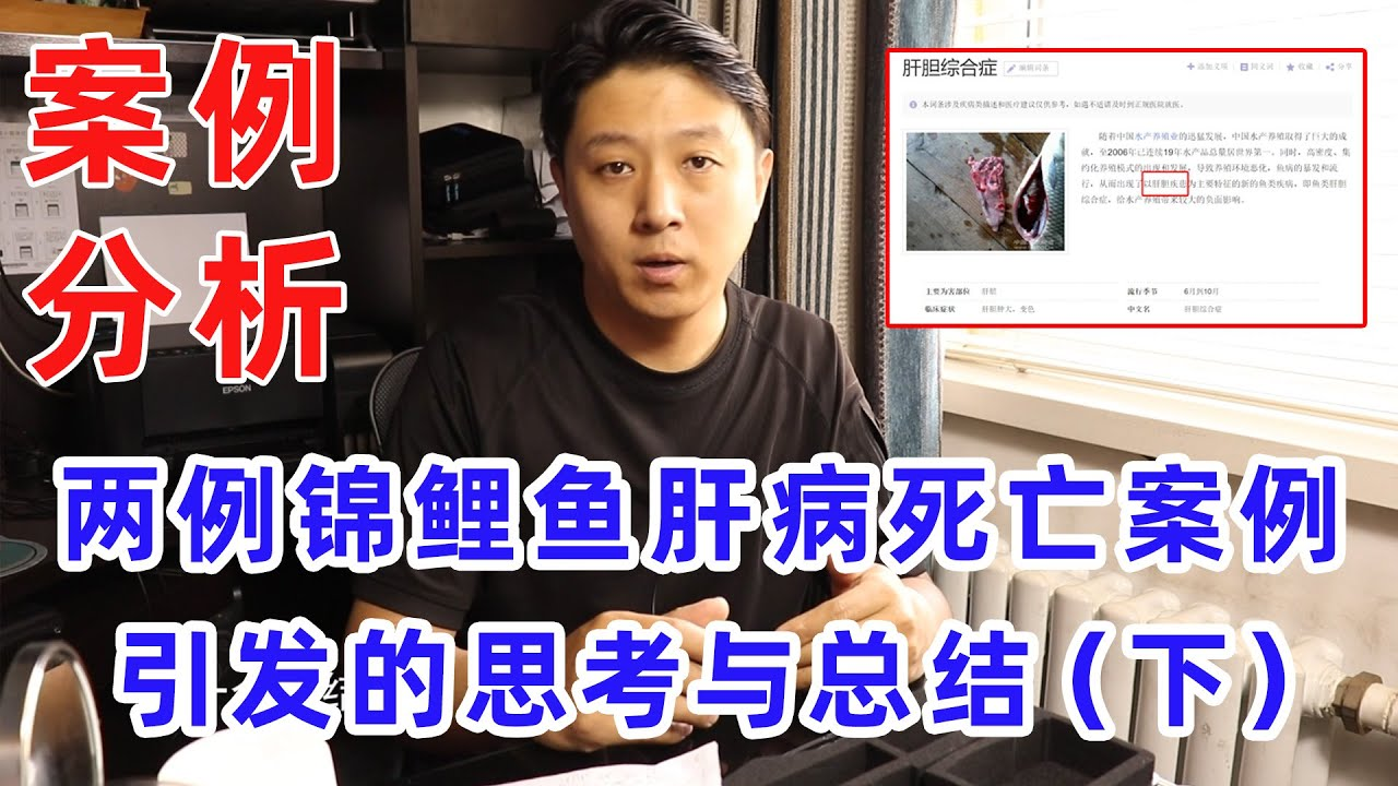 """【亮哥养鱼】关于""""锦鲤鱼肝病死亡案例""""的思考与总结(下)#案例分析"""