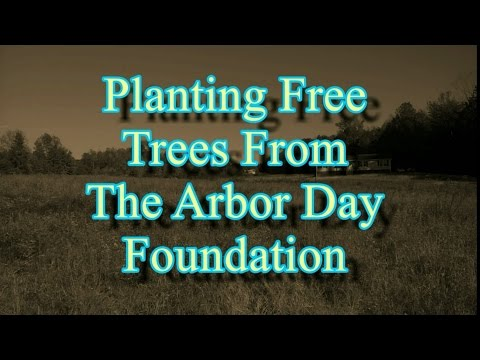 Planting Free Trees From The Arbor Day Foundation