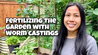Feeding the Garden - How Worm Castings Work and Build Healthy Soil