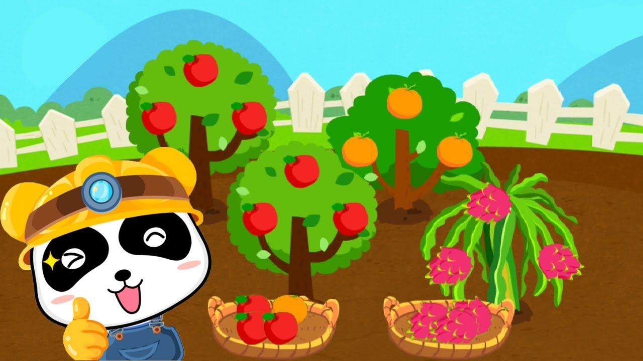 Trò chơi nông trại vui vẻ – Vườn cây ăn quả của bé Gấu Trúc – Bé học cách chăm sóc cây