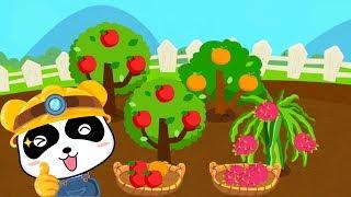 Trò chơi nông trại vui vẻ - Vườn cây ăn quả của bé Gấu Trúc - Bé học cách chăm sóc cây