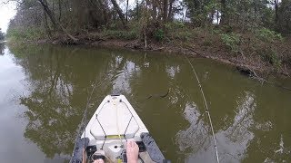 Cottonmouths! What not to do when you see one! Perils of Eastern Oklahoma Kayak Fishing!